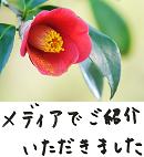 著書/メディア掲載